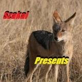 Szakal Presents